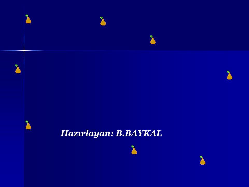 Hazırlayan: B.BAYKAL