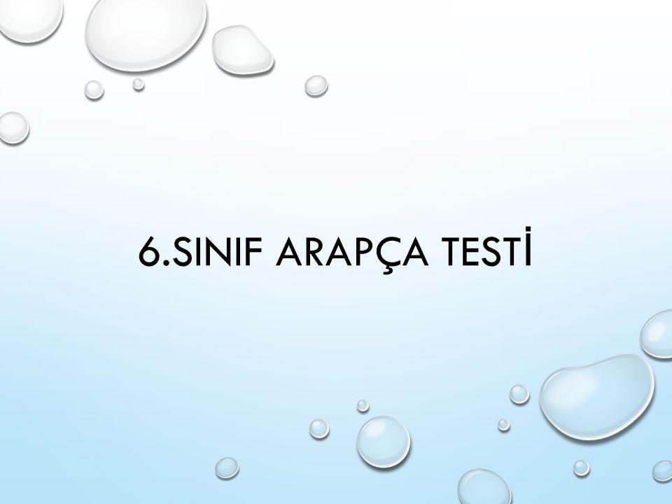 6.SINIF ARAPÇA TESTİ