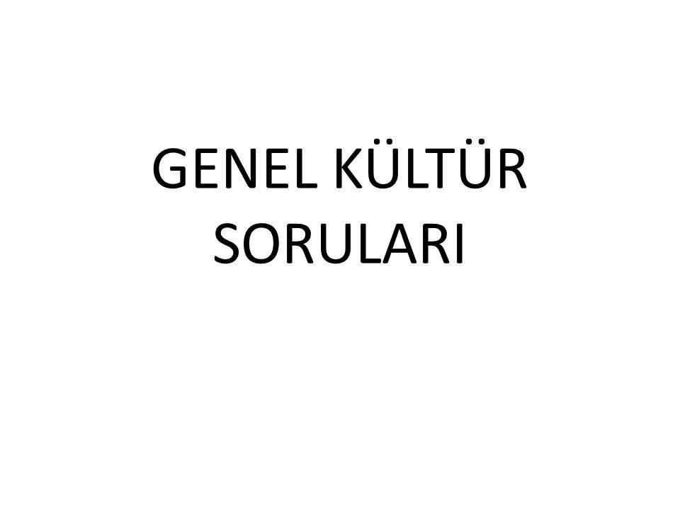 GENEL KÜLTÜR SORULARI
