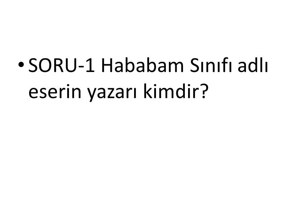 SORU-1 Hababam Sınıfı adlı eserin yazarı kimdir