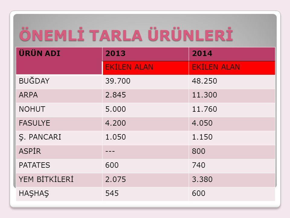 ÖNEMLİ TARLA ÜRÜNLERİ ÜRÜN ADI 2013 2014 EKİLEN ALAN BUĞDAY 39.700