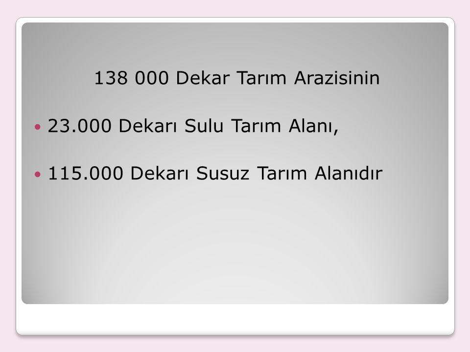 138 000 Dekar Tarım Arazisinin