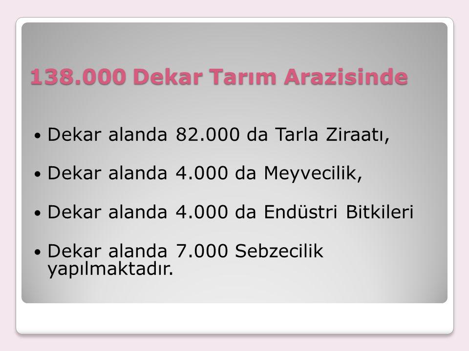 138.000 Dekar Tarım Arazisinde