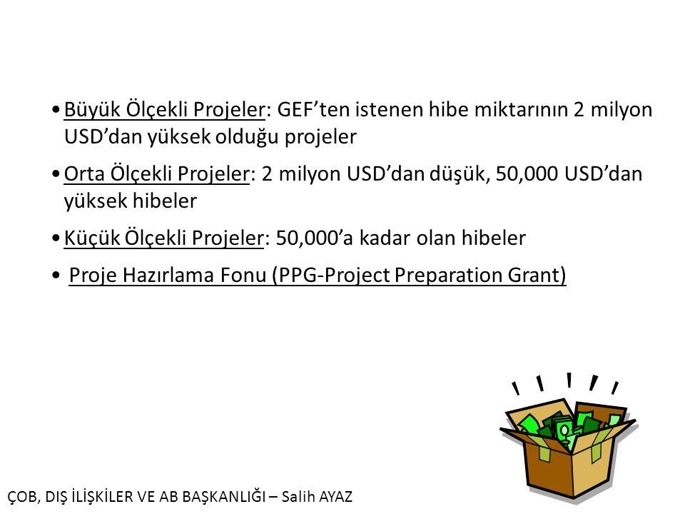 FON TÜRLERİ Büyük Ölçekli Projeler: GEF'ten istenen hibe miktarının 2 milyon USD'dan yüksek olduğu projeler.