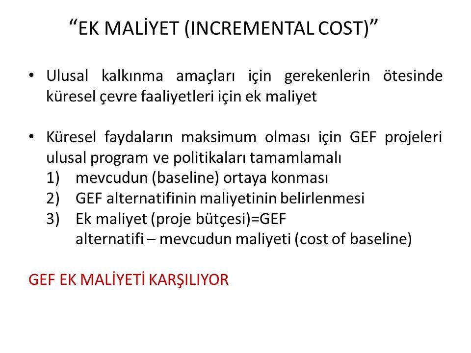 EK MALİYET (INCREMENTAL COST)