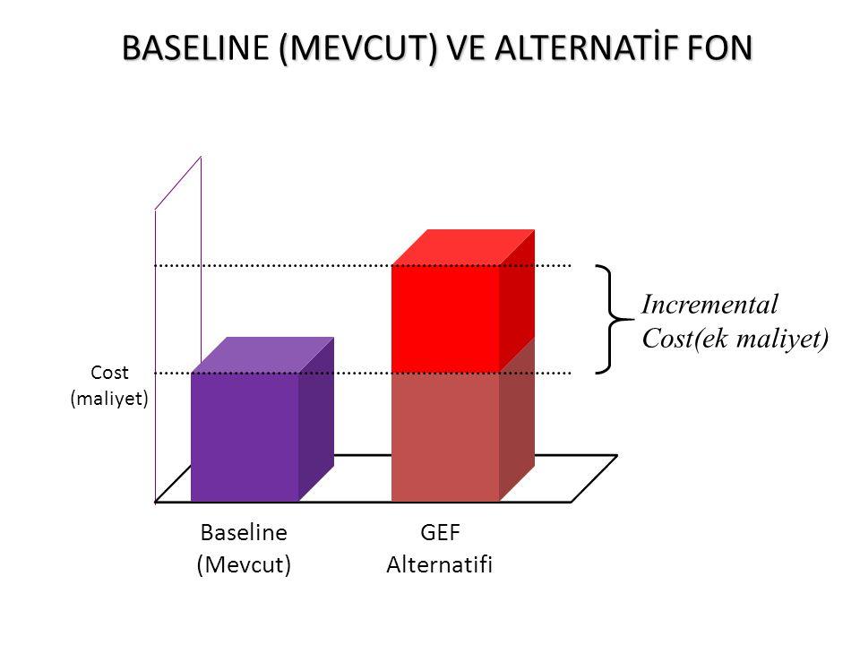 BASELINE (MEVCUT) VE ALTERNATİF FON
