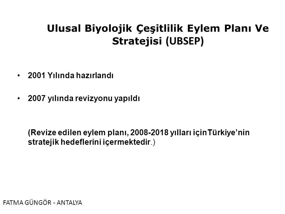 Ulusal Biyolojik Çeşitlilik Eylem Planı Ve Stratejisi (UBSEP)