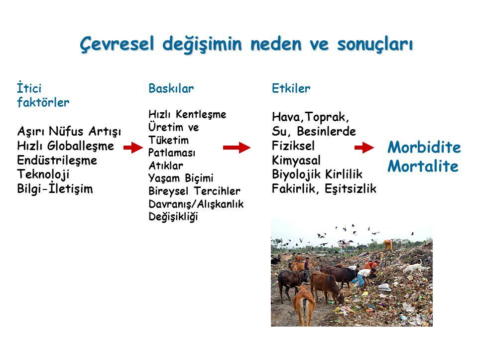 Çevresel değişimin neden ve sonuçları