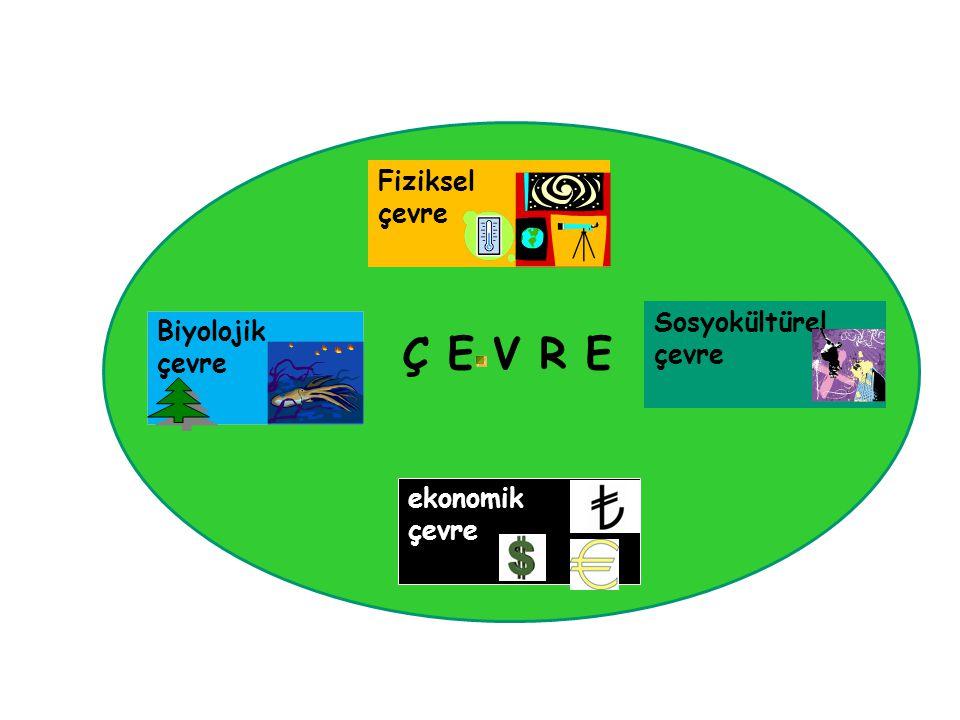 Ç E V R E Fiziksel çevre Sosyokültürel Biyolojik çevre çevre ekonomik