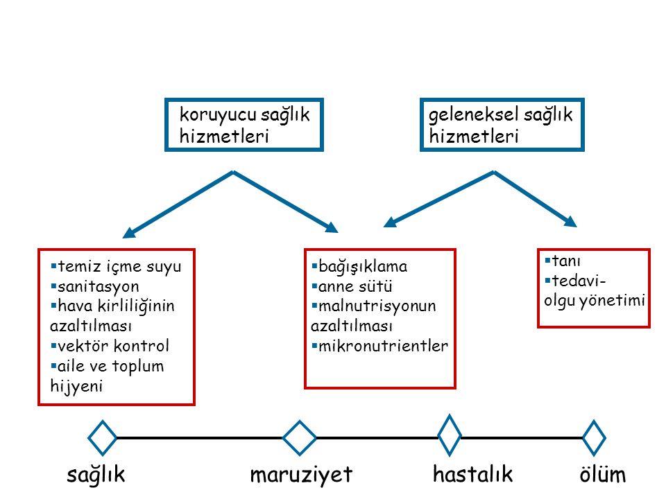 Yenidoğanda pediatrik testis: ne yapmalı