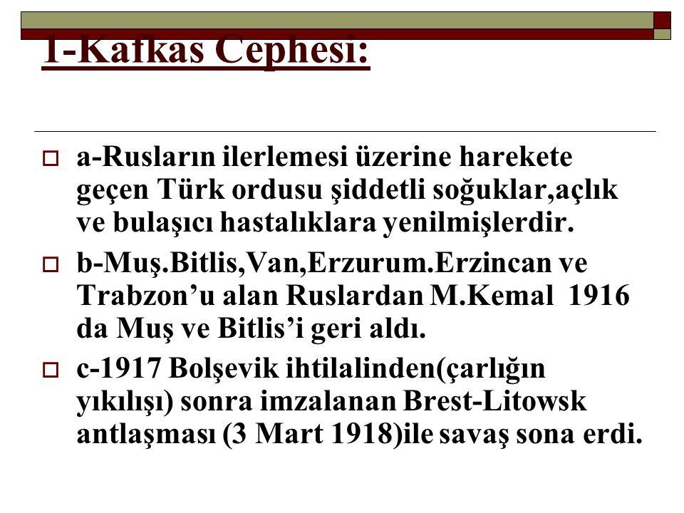 1-Kafkas Cephesi: a-Rusların ilerlemesi üzerine harekete geçen Türk ordusu şiddetli soğuklar,açlık ve bulaşıcı hastalıklara yenilmişlerdir.