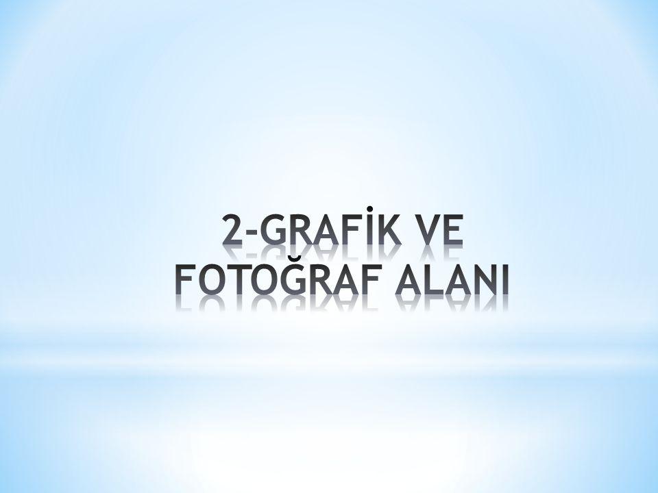 2-GRAFİK VE FOTOĞRAF ALANI