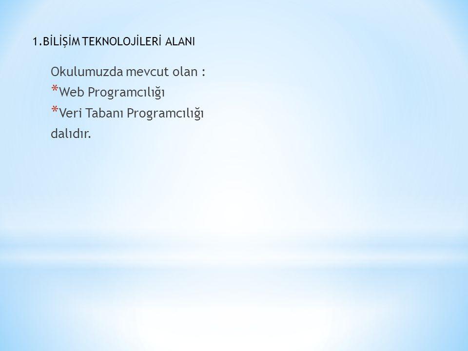 Okulumuzda mevcut olan : Web Programcılığı Veri Tabanı Programcılığı