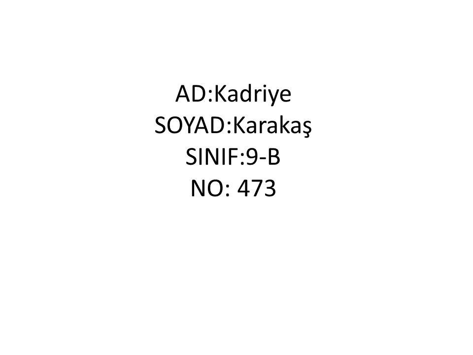 AD:Kadriye SOYAD:Karakaş SINIF:9-B NO: 473