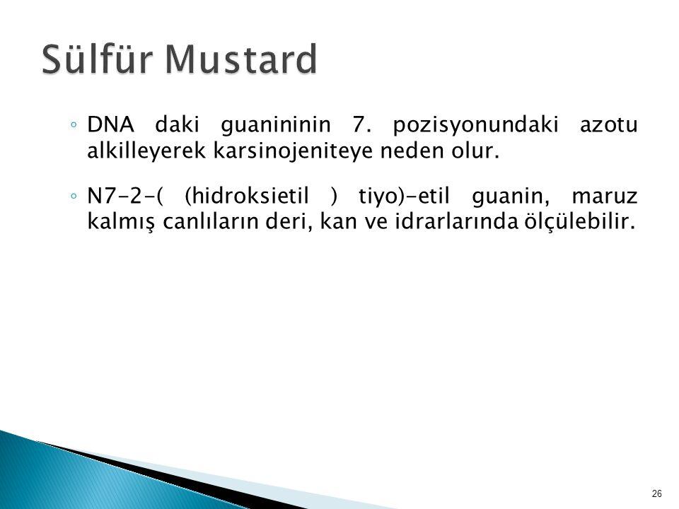 Sülfür Mustard DNA daki guanininin 7. pozisyonundaki azotu alkilleyerek karsinojeniteye neden olur.