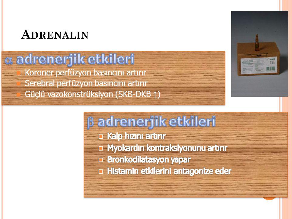  adrenerjik etkileri  adrenerjik etkileri Adrenalin