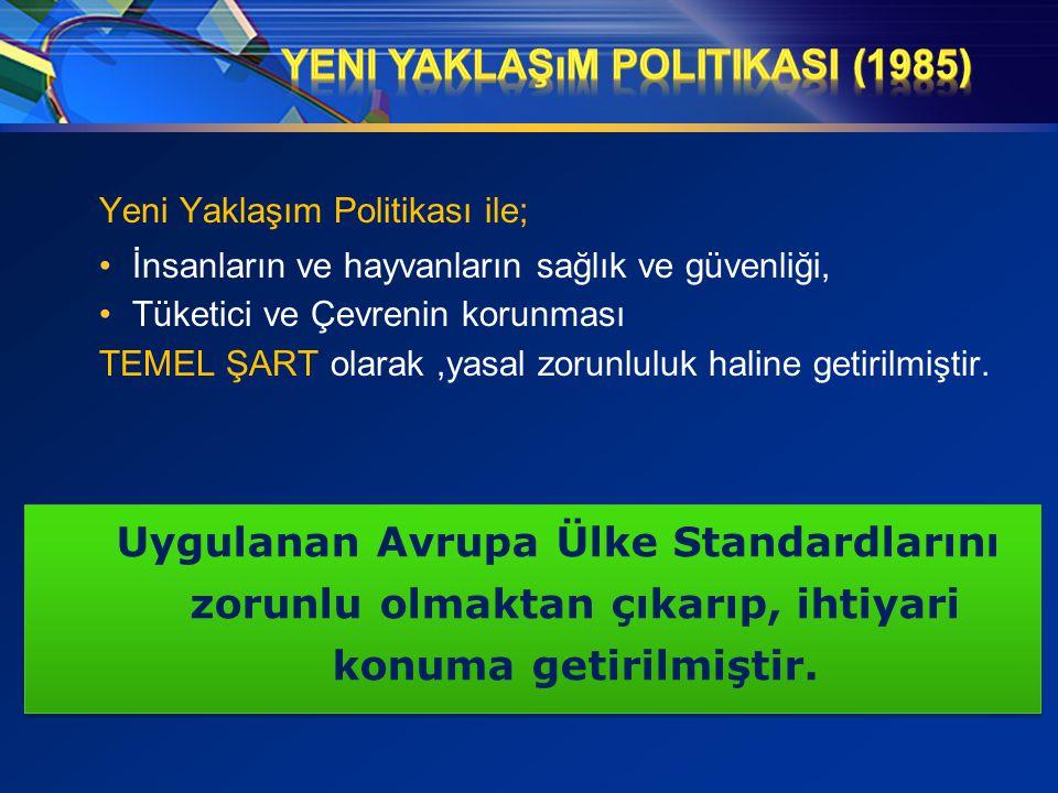 Yeni Yaklaşım PolitikasI (1985)