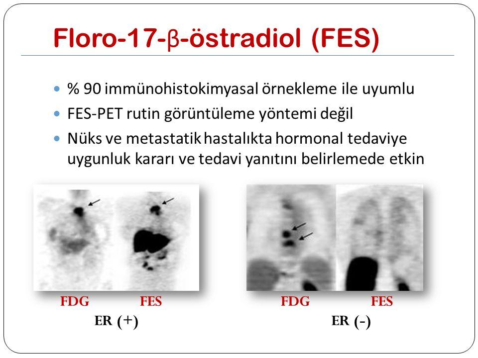 Floro-17-β-östradiol (FES)