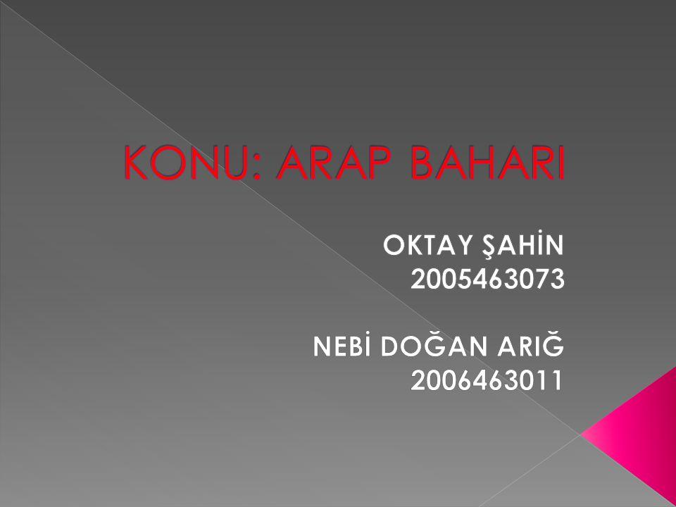 OKTAY ŞAHİN 2005463073 NEBİ DOĞAN ARIĞ 2006463011