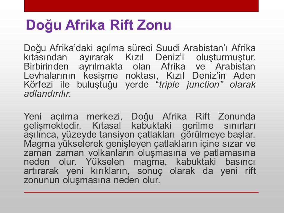 Doğu Afrika Rift Zonu