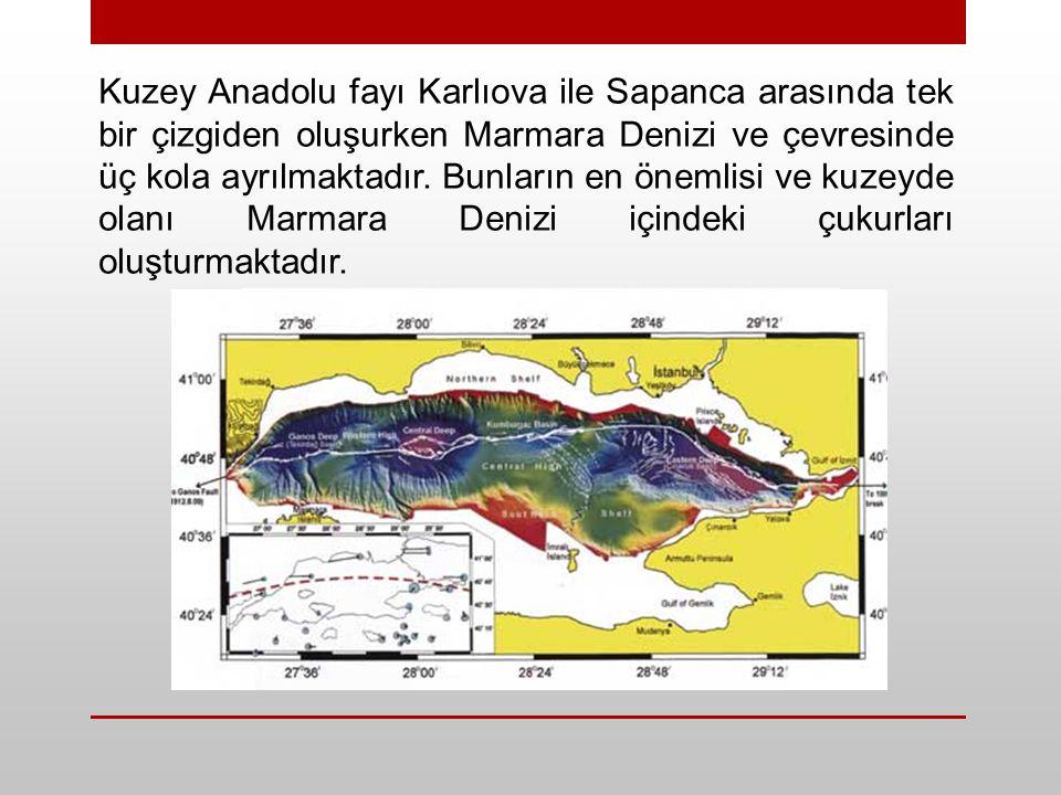 Kuzey Anadolu fayı Karlıova ile Sapanca arasında tek bir çizgiden oluşurken Marmara Denizi ve çevresinde üç kola ayrılmaktadır.