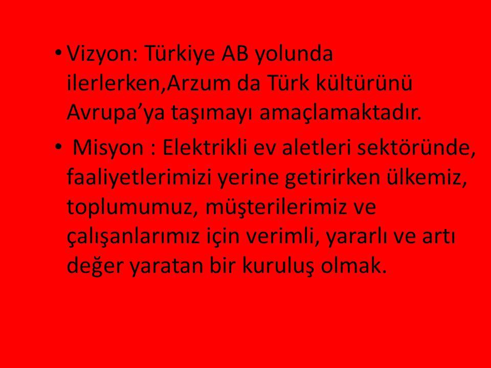 Vizyon: Türkiye AB yolunda ilerlerken,Arzum da Türk kültürünü Avrupa'ya taşımayı amaçlamaktadır.
