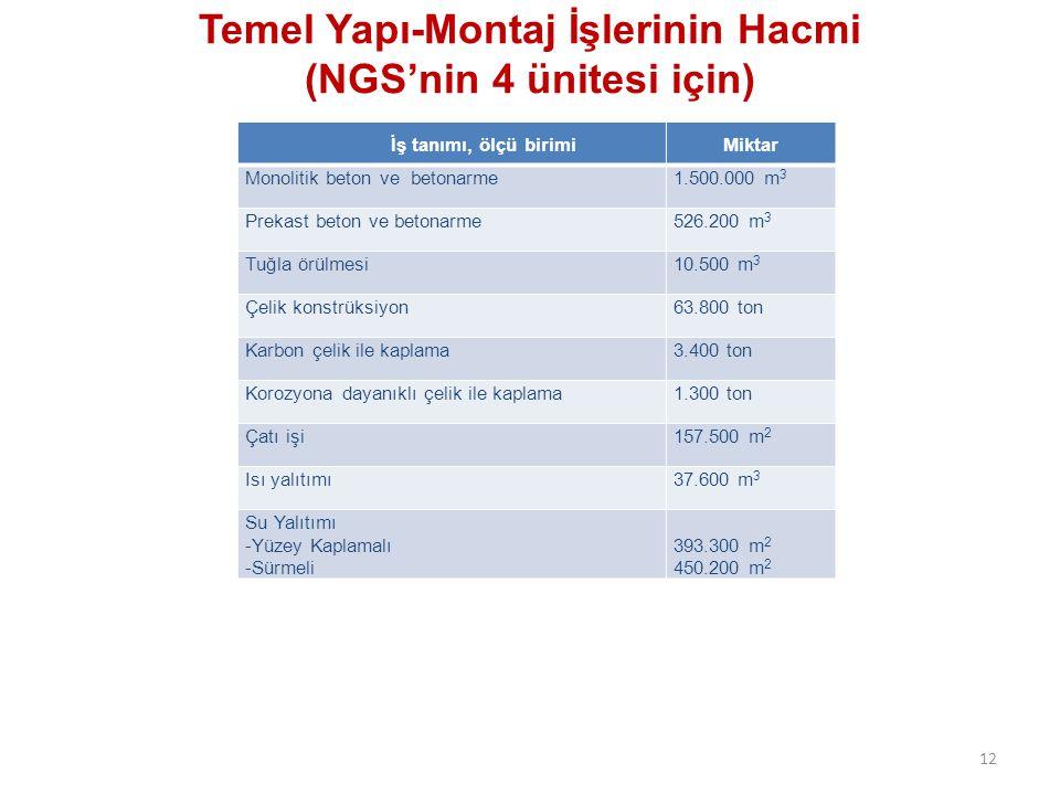 Temel Yapı-Montaj İşlerinin Hacmi (NGS'nin 4 ünitesi için)