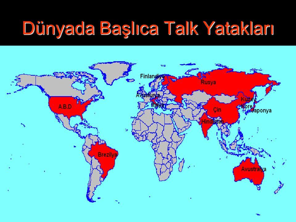 Dünyada Başlıca Talk Yatakları