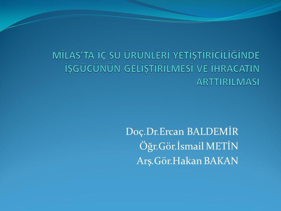 Doç.Dr.Ercan BALDEMİR Öğr.Gör.İsmail METİN Arş.Gör.Hakan BAKAN
