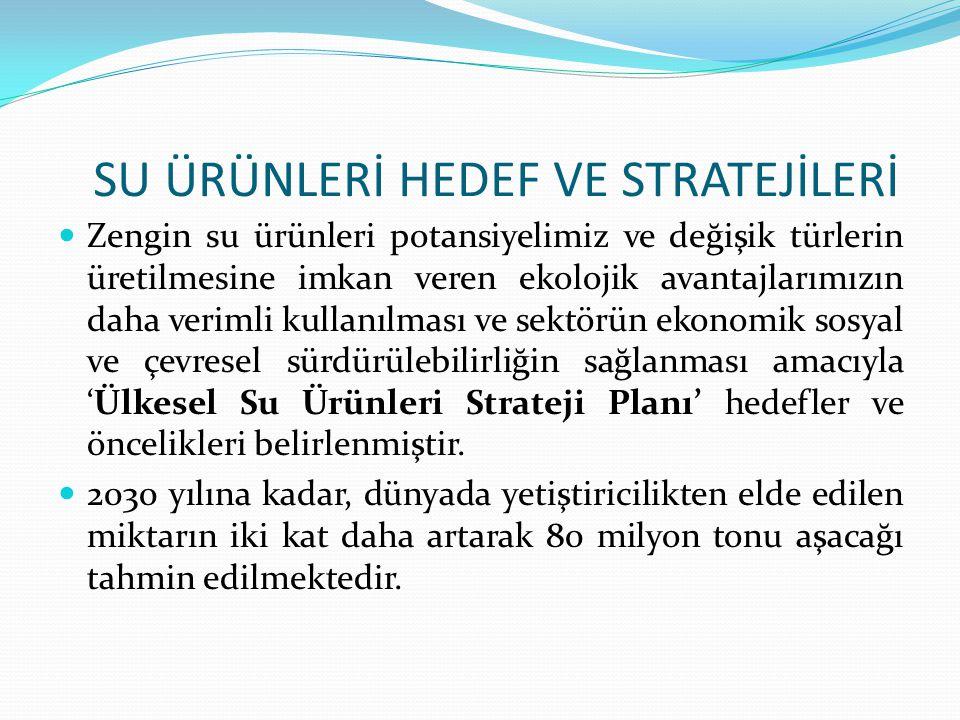 SU ÜRÜNLERİ HEDEF VE STRATEJİLERİ