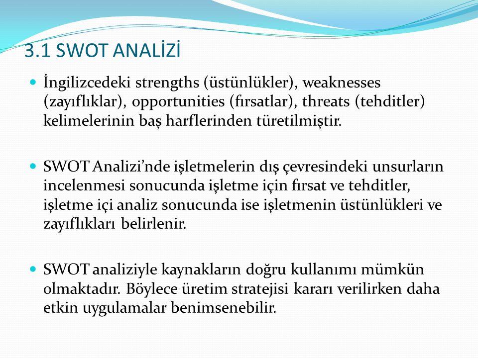 3.1 SWOT ANALİZİ