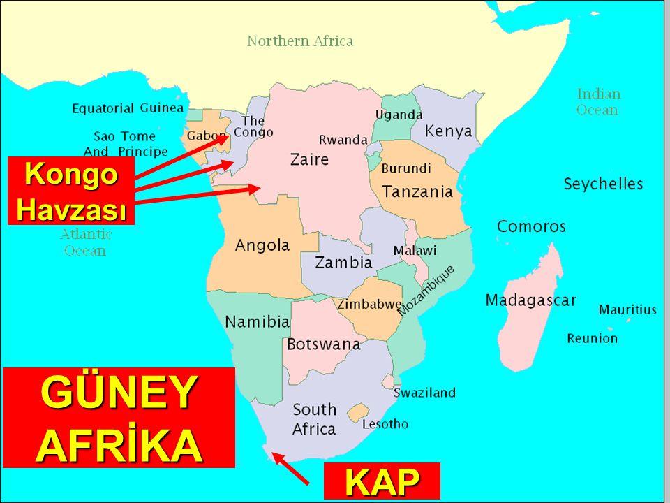 Kongo Havzası GÜNEY AFRİKA KAP