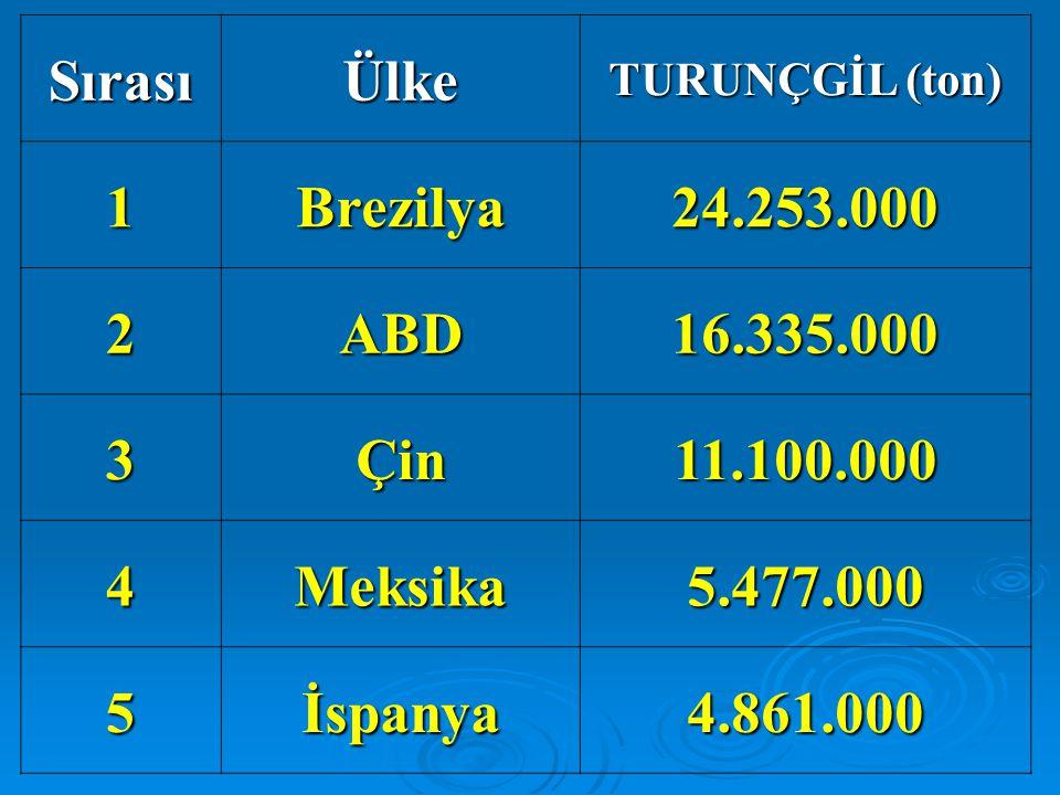 Sırası Ülke 1 Brezilya 24.253.000 2 ABD 16.335.000 3 Çin 11.100.000 4