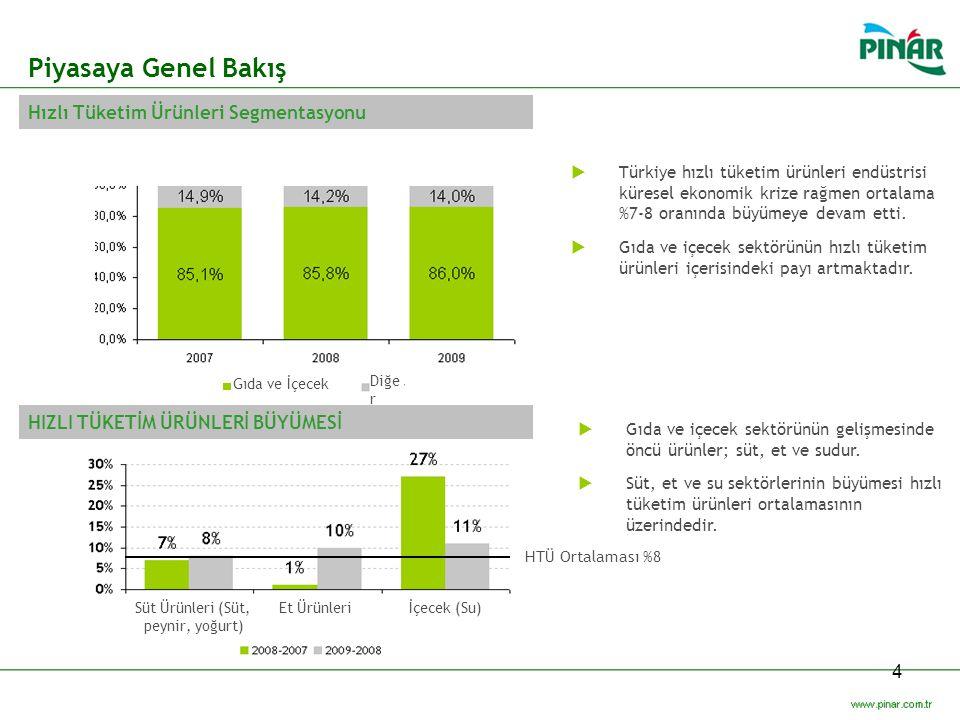 Piyasaya Genel Bakış Hızlı Tüketim Ürünleri Segmentasyonu