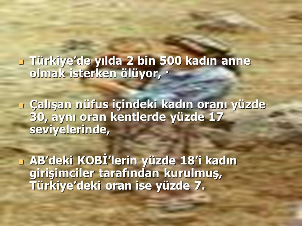 Türkiye'de yılda 2 bin 500 kadın anne olmak isterken ölüyor, ·