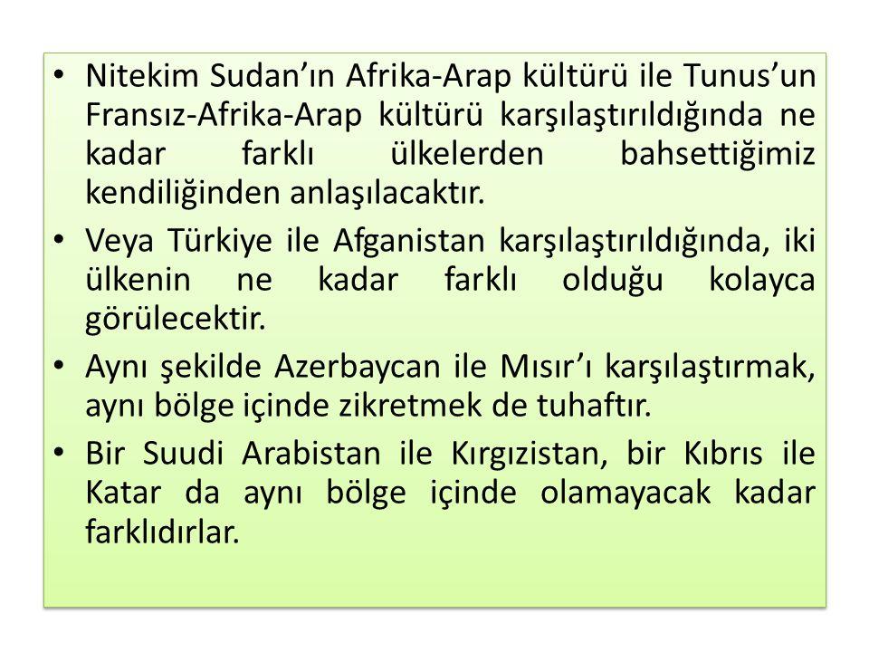 Nitekim Sudan'ın Afrika-Arap kültürü ile Tunus'un Fransız-Afrika-Arap kültürü karşılaştırıldığında ne kadar farklı ülkelerden bahsettiğimiz kendiliğinden anlaşılacaktır.