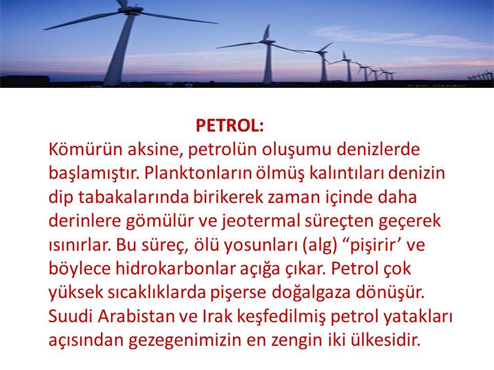 PETROL: Kömürün aksine, petrolün oluşumu denizlerde başlamıştır