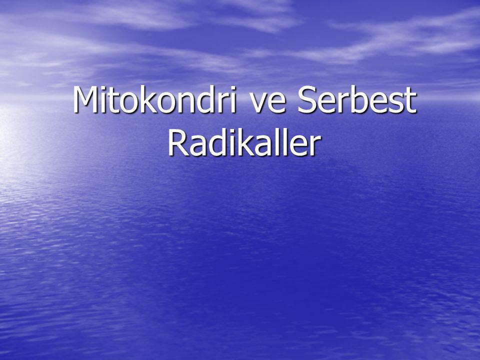 Mitokondri ve Serbest Radikaller