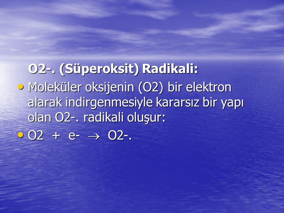 O2-. (Süperoksit) Radikali: