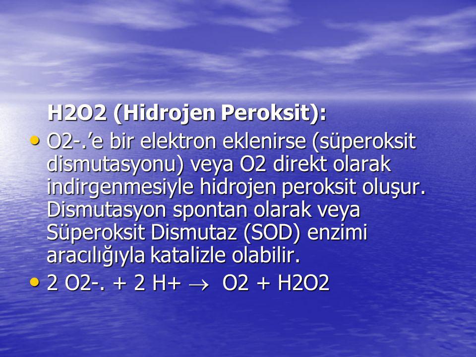 H2O2 (Hidrojen Peroksit):