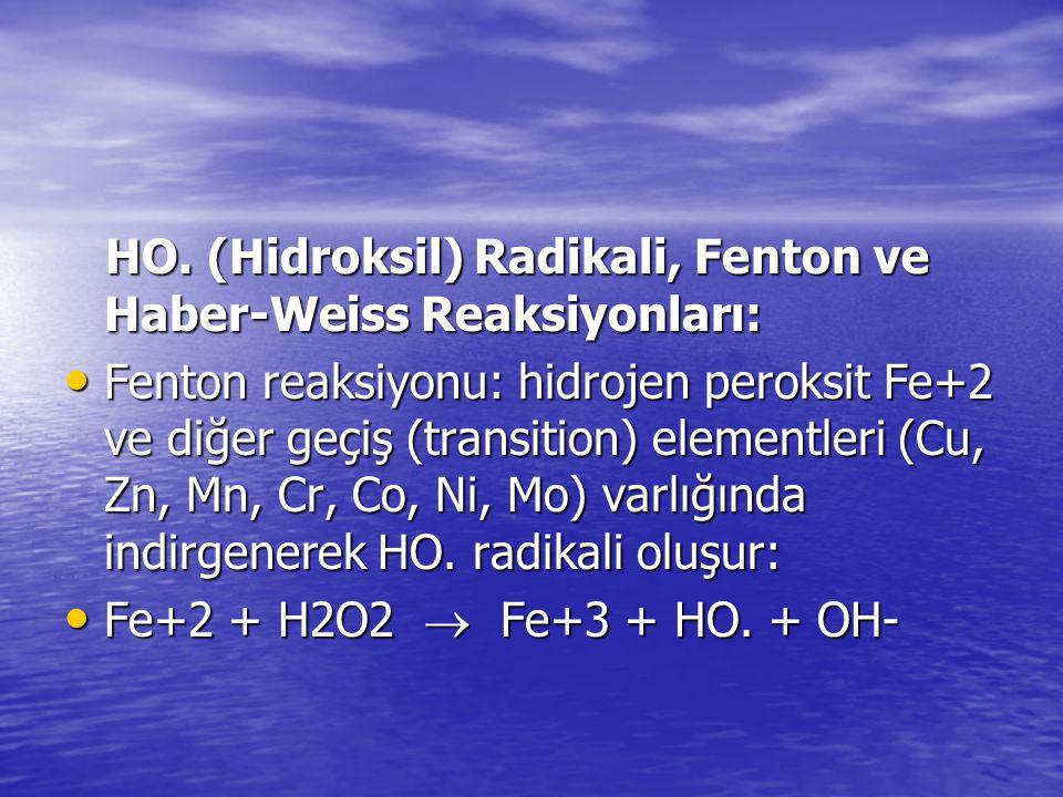 HO. (Hidroksil) Radikali, Fenton ve Haber-Weiss Reaksiyonları: