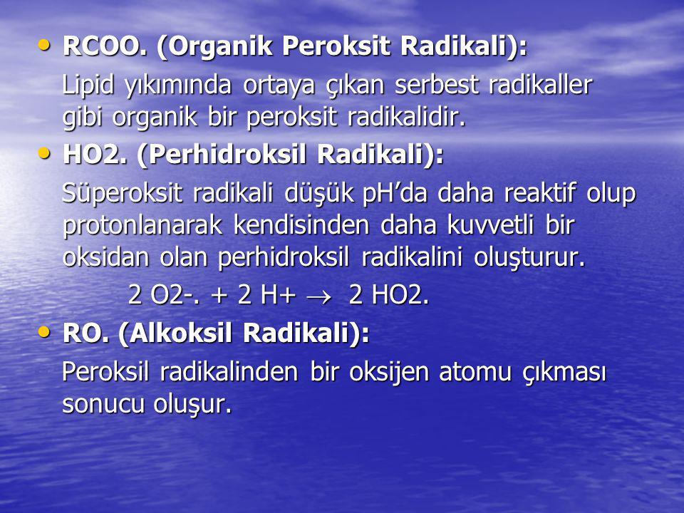 RCOO. (Organik Peroksit Radikali):