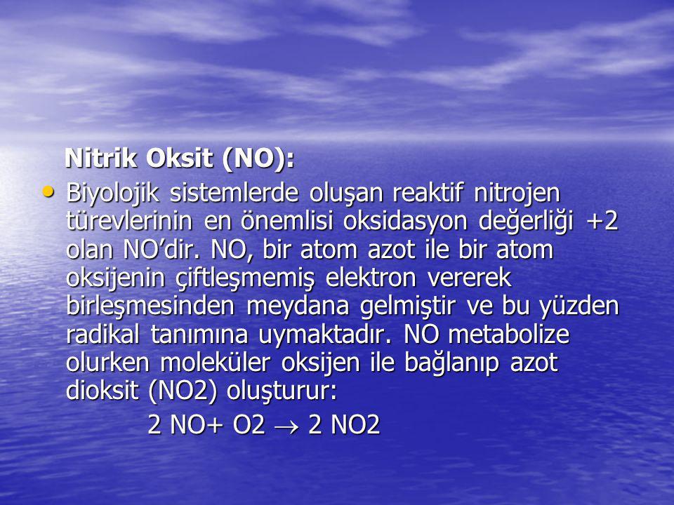 Nitrik Oksit (NO):