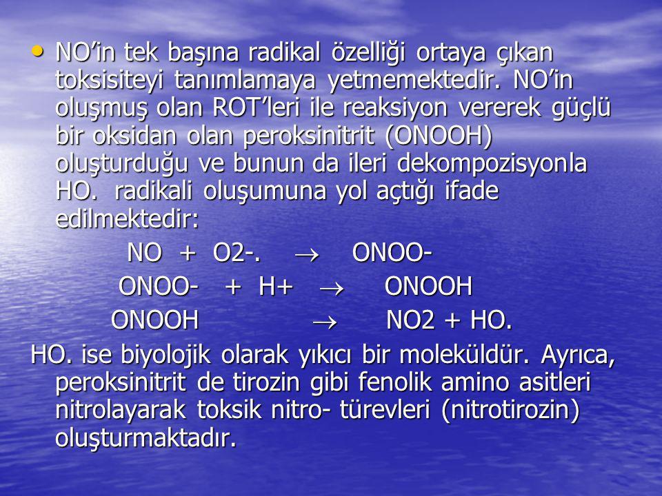 NO'in tek başına radikal özelliği ortaya çıkan toksisiteyi tanımlamaya yetmemektedir. NO'in oluşmuş olan ROT'leri ile reaksiyon vererek güçlü bir oksidan olan peroksinitrit (ONOOH) oluşturduğu ve bunun da ileri dekompozisyonla HO. radikali oluşumuna yol açtığı ifade edilmektedir: