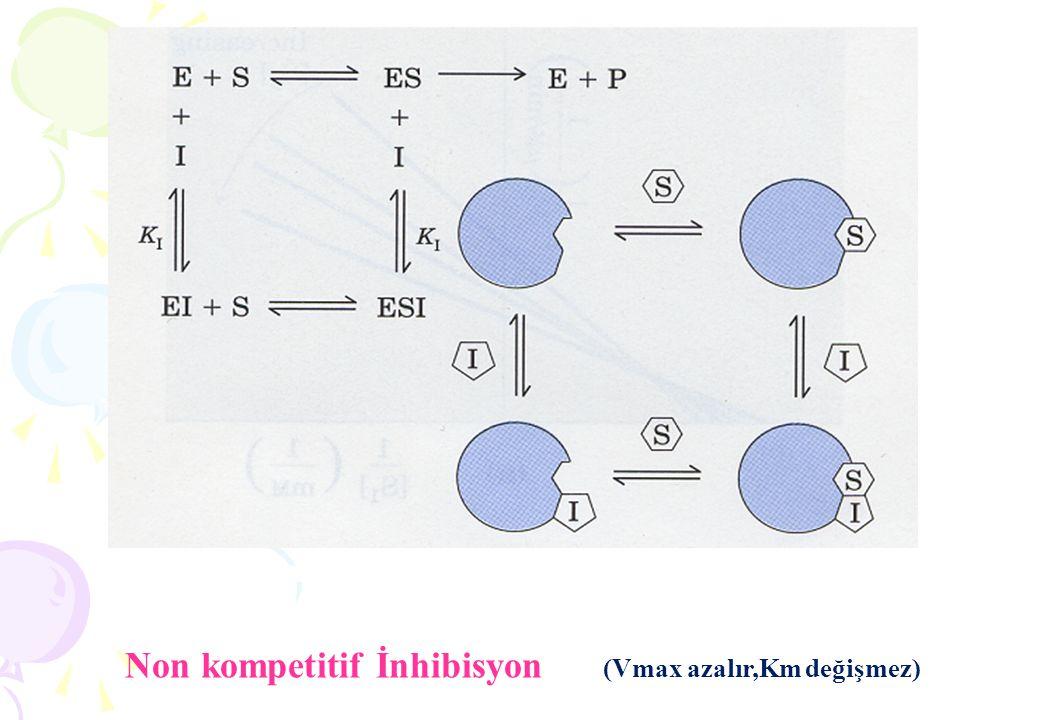 Enzim aktivitesinde,optimum temperatür 2 faktörle belirlenmektedir (Kırmızı eğri).