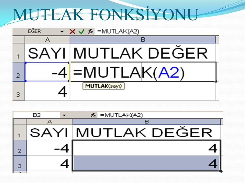 MUTLAK FONKSİYONU