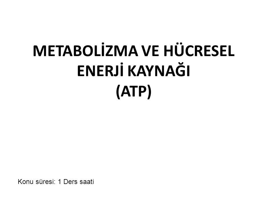 METABOLİZMA VE HÜCRESEL ENERJİ KAYNAĞI (ATP)