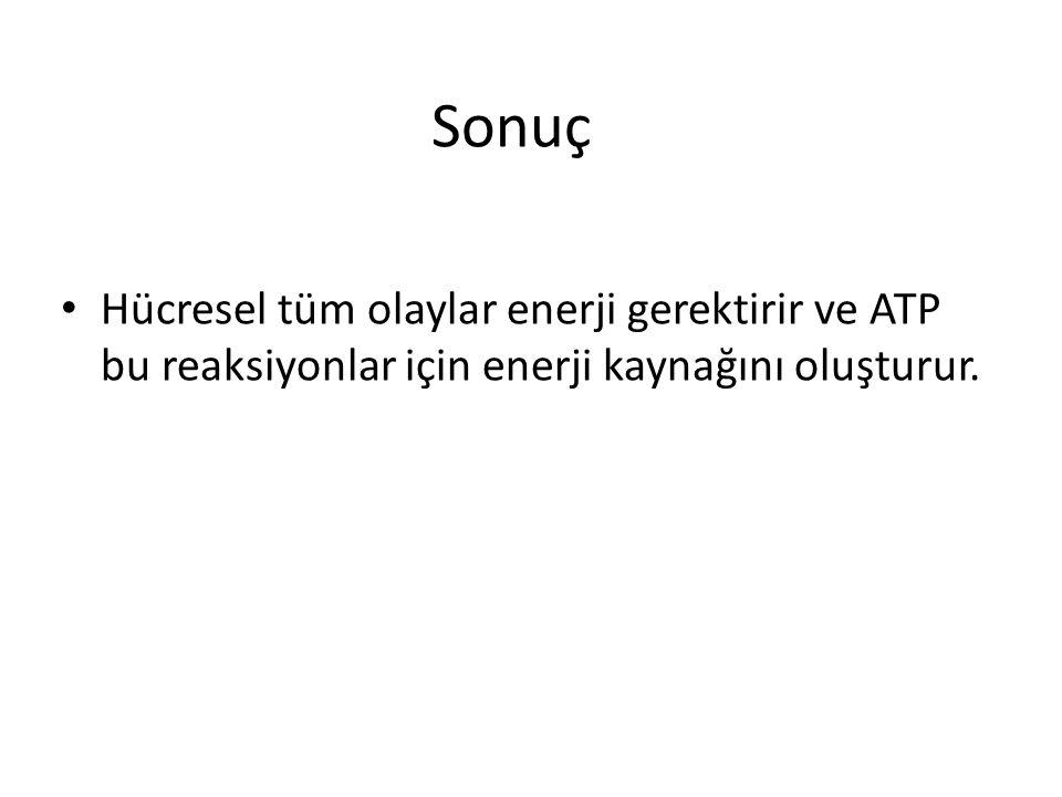 Sonuç Hücresel tüm olaylar enerji gerektirir ve ATP bu reaksiyonlar için enerji kaynağını oluşturur.