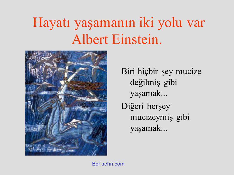 Hayatı yaşamanın iki yolu var Albert Einstein.