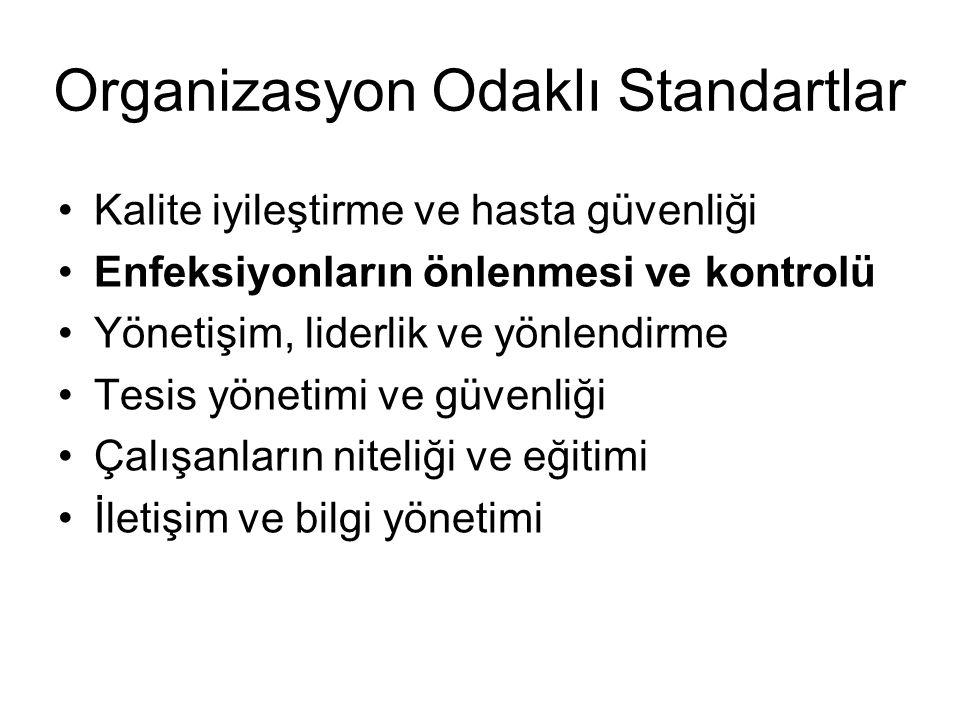 Organizasyon Odaklı Standartlar